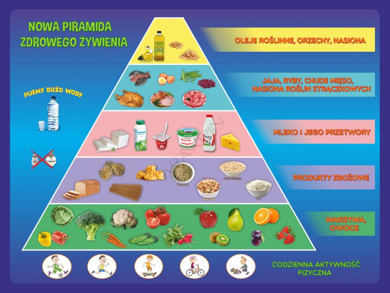 Znalezione obrazy dla zapytania piramida zdrowego żywienia